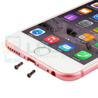 Винт iPhone 6S внешний (10 шт.) Розовое Золото