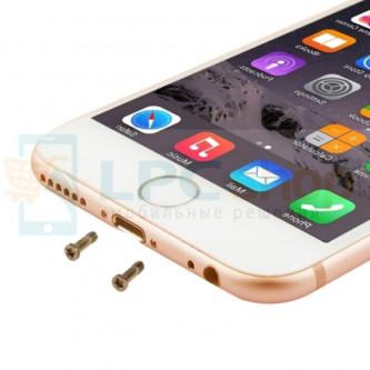 Винт iPhone 6S внешний (10 шт.) Золото
